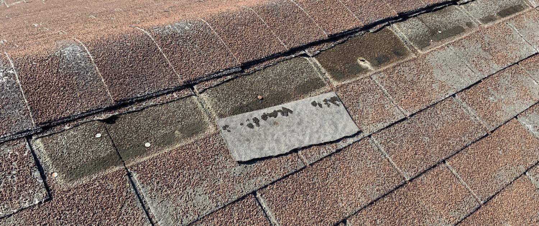Damaged asphalt shingle roof