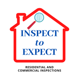 Inspect to Expect Logo
